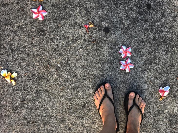 Plumeria Feet